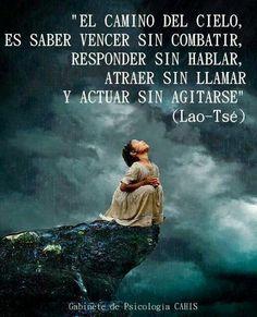 ... Lao-Tsé. El camino del cielo, es saber vencer sin combatir, responder sin hablar, atraer sin llamar y actuar sin agitarse.