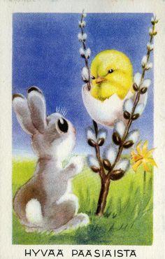 Hauskaa Pääsiäistä!  #pääsiäinen #eastern #tiput #puput #pajunkissat Penny Parker, Welcome Winter, Easter Flowers, Peter Cottontail, New Beginnings, Pretty Flowers, Pet Birds, Easter Eggs, Retro
