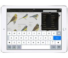 L'application pour identifier et reconnaître les oiseaux Site Photo, Computer Keyboard, Music Instruments, Guide, Bird Identification, Identify Birds, Animaux, Computer Keypad, Musical Instruments