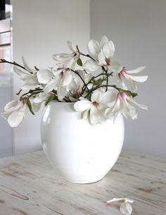I Love Wit ...magnolia`s in een witte vaas