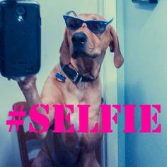 Selfy!