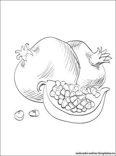 Color this picture of a Pomegranate and others fruits or vegetables with our site of free printable pages. Colouring Pages, Adult Coloring Pages, Coloring Books, Ceramic Painting, Fabric Painting, Jewish Crafts, Acrylic Painting Techniques, Fruit Art, Ink Illustrations
