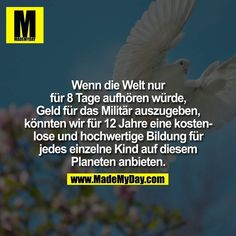 If the world stopped spending money on military for 8 days, enough money would b… - Bildung Useless Knowledge, Religion, All Hero, Money Quotes, Social Trends, True Words, Ohana, True Stories, Good To Know