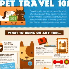 Great infographic about Pet Travel!