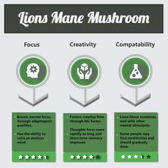 Lion's Mane Mushroom - Benefits & Effects + Dosing Mushroom Benefits, Lion Mane, Brain Health, Health And Wellbeing, Healthy Mind, Superfoods, Side Effects, Lions, Stuffed Mushrooms