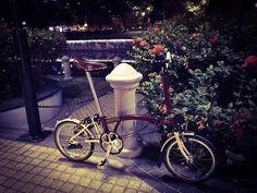 #OXBlood by the river cyclelane. #CSCxBrompton #Brompton #BIKEgang #BIKEgangSG #BromptonSociety #BromptonMODs #BromptonLife #MyBrompton #BromptonBicycle #小布 #小布單車幫 #BIKEgangHut #BIKEgangTw #小布生活 #我的小布