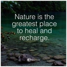 Benefits of forest, forest bathing, power of positivity, ancient beauty, in Hiking Quotes, Travel Quotes, Words Quotes, Life Quotes, Sayings, Daily Qoutes, Citation Nature, Mountain Quotes, Forest Bathing