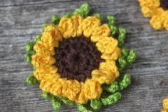 12 Beste Afbeeldingen Van Zonnebloemen