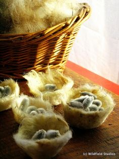 """how to felt wool bird nests with pussy willow """"eggs"""" So cute!"""