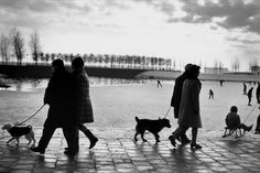 1964. An evening walk along the Sloterplas. The Sloterplas lake is located in the middle of the western Amsterdam suburbs Slotermeer, Geuzenveld, Slotervaart and Osdorp. It was was dug between 1948 and 1956 and is about 30 meters deep. Photo Magnum Photos / Leonard Freed. #amsterdam #1964 #sloterplas