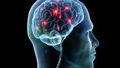 Encuentran #Proteína responsable del #Alzheimer #TuNexoDe - http://a.tunx.co/Gz0q4