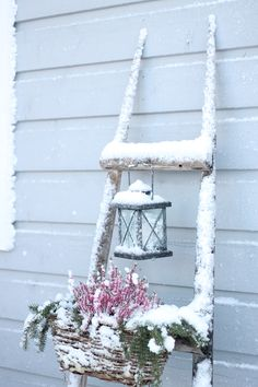 Oma koti onnenpesä: Talvi Pink Christmas, Winter Christmas, Christmas Home, Winter Fairy, Winter Garden, Garden Workshops, Garden Lanterns, Winter Scenery, Winter Beauty
