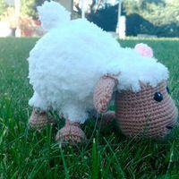 Free crochet pattern: Sheep by Gateando Crochet: Sheep Amigurumi Pattern. Scroll down for English version Crochet Sheep, Crochet Ball, Crochet Patterns Amigurumi, Cute Crochet, Crochet Animals, Crochet Toys, Cactus Amigurumi, Amigurumi Free, Crochet Fringe