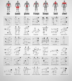 best full body workout routine chart with illustrations showing