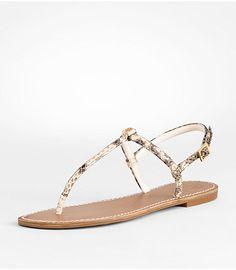 Tory Burch   Watersnake sandal
