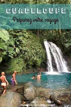 Was in Guadeloupe zu tun und zu besuchen: Low Budget Business Ideas Destinations D'europe, Viewing Wildlife, Caribbean Vacations, Voyage Europe, Most Beautiful Beaches, Beach Trip, Cool Places To Visit, Road Trip, America
