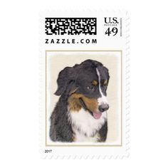Bernese Mountain Dog Postage - drawing sketch design graphic draw personalize