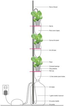 The basic configuration includes three bottles that act as plant holders, a bottom reservoir to capture/hold water, and tubing to move water through the system. It also utilizes a small air pump that uses water displacement to elevate the water up to the top of the system, where it can then trickle down through each plant.