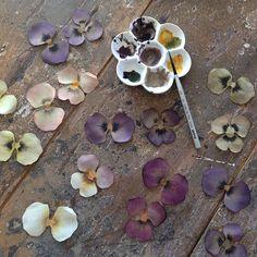 パンジーのお化粧してます。  どんなメイクにしようかな〜っ。  #flower#handmade#Antique#Art#Photograph#Flowerarrangement#Interior#布花#パンジー#春#染め花#暮らし#ナチュラル#花#手仕事#ものづくり#アートフラワー