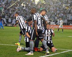 BotafogoDePrimeira: Análise: caiu na Arena... Bota confirma química na...