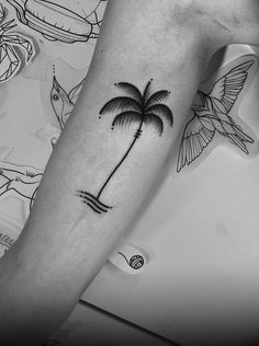 douglas cardoso tattooing#dcardoso #palmtree #palmeira #dotwork #pontilhism #blackwork #darkartists #blxinkdouglas cardoso tattooing