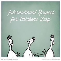 International #RespectforChickens Day Party!
