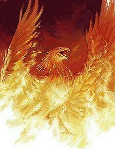 Phoenix rising from the flames (artist?) - (forum-sherwood tavern), , Phoenix rising from the flames (artist? Phoenix Rising, Phoenix Force, Phoenix Artwork, Phoenix Images, Magical Creatures, Fantasy Creatures, Tattoo Ave Fenix, Hirsch Silhouette, Phoenix Tattoo Design