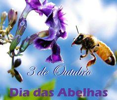 ALEGRIA DE VIVER E AMAR O QUE É BOM!!: DIÁRIO ESPIRITUAL #259 - 03/10 - Equilíbrio