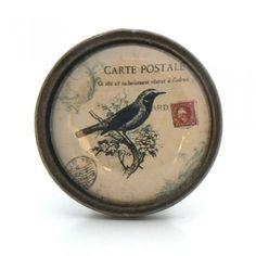 Bouton de meuble Oiseau noir - Collection Vintage - Boutons-Mandarine.com