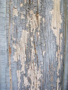 Distressed Surfaces - weathered wood with cracked textures; ivory & grey colour inspiration