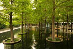 The Landscape Architecture Legacy of Dan Kiley | The Cultural Landscape Foundation