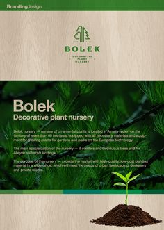Bolek nursery — nursery of ornamental plants is located in Almaty region on the territory of more than 60 hectares, equipped with all necessary materials and equipment for growing plants for gardens and parks on the European technology.The main speciali…