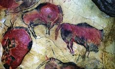 Altamira cave paintings to be opened to the public once again |  Small groups of visitors will be allowed into Spain's 'Sistine Chapel of paleolithic art', the regional government has said #artpainting