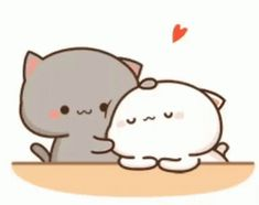 The perfect Cat GrayCat WhiteCat Animated GIF for your conversation. Cute Panda Cartoon, Cute Anime Cat, Cute Cartoon Pictures, Cute Love Pictures, Cute Cat Gif, Cute Cats, Cute Bear Drawings, Cute Cartoon Drawings, Cute Love Memes