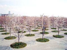 plein bomen rond patroon ritmiek verharding parking omgevingsaanleg