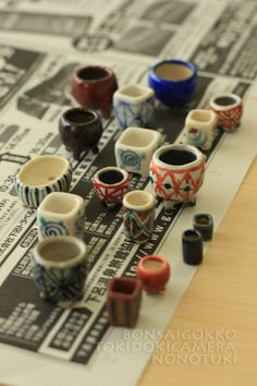 Sometimes the camera. Indoor Bonsai Tree, Mini Bonsai, Bonsai Plants, Bonsai Garden, Ikebana, Japanese Taste, Buddha Garden, Air Plant Terrarium, Ceramic Pots