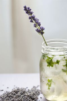 Lavender Mojito >> but does anyone hate the word mojito as much as i do?