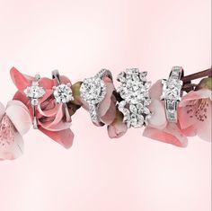 Özel anların tek tanığı One & Only pırlanta yüzükler göz kamaştırıyor.. #love #diamond #spring #bahar #pırlanta #ring #aşk #karat #carat
