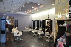 #110 Gatsby Salon Green Brook, NJ Above Ceiling Kit