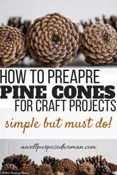 How to Prepare Pine Cones for Crafts: One Step to NEVER Skip