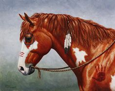 Native American War Horse Print By Crista Forest