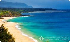 Secret Beach, Kauai, the best beach I've ever been to. Totally worth the hike down the steep, muddy hill.