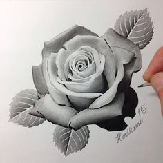 d647b9d6821f8ac48d2ca41582dfe99b.jpg (236×236) Rose Drawing Tattoo, P Tattoo, Tattoo Style, Tattoo 2017, Dark Tattoo, Tattoo Drawings, 3d Flower Tattoos, Mini Tattoos, Rose Tattoos