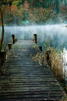 [a pier on a lake] a misty, soothing scene; too bad no title or photographer is listed Beautiful World, Beautiful Places, Beautiful Pictures, Lake Life, Mother Nature, Mists, Serenity, Nature Photography, In This Moment