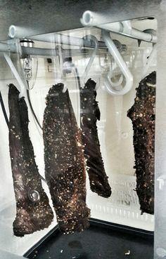 How to make your own biltong – Chef Lesego's Blog Dehydration Machine, Salted Caramel Fudge, Salted Caramels, Make Your Own, Make It Yourself, Biltong, South African Recipes, Oreo Cake, Russian Recipes