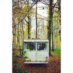 #foret#forest#automne#autumn#nature#caravane#caravan#abandonnee#abandoned#arbres#trees#feuilles #leaves#urbex