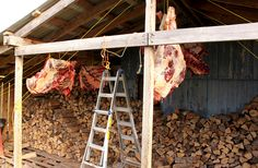 Cultivating Home: How to Butcher a Cow or Beef Butchering