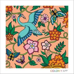 Colorfy.Animals