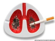 Effecting The Lungs…