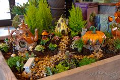 Stop into Sunnyside Gardens to get inspiration and materials to build your own Fairy Garden. Living plants and little homes make an enchanted landscape.